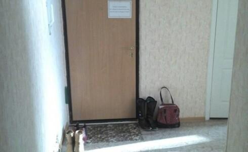 Сдается 3 комнатная квартира 73м2 в Замелекесье, 21 комплекс, номер 1003832 - 23