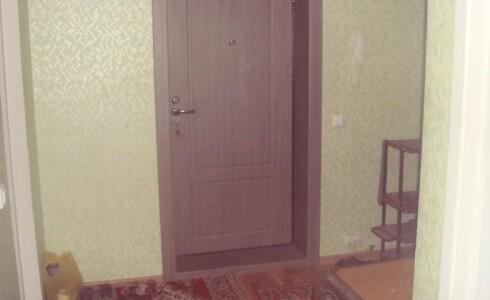 Продается 1-комнатная квартира 48м2  на ЗЯБи, 18 комплекс, номер 2339 - 8