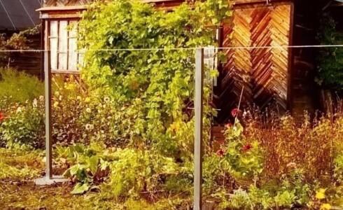 Продается дом 60м2 на земле 8 соток в с. Дизелист, номер 5563 - 7