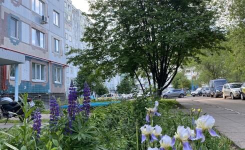 Продается 3-комнатная квартира 66м2  в Новом Городе, 31 комплекс, номер 7032 - 19